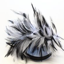 Black and White Stripped Hackle Feather Mount